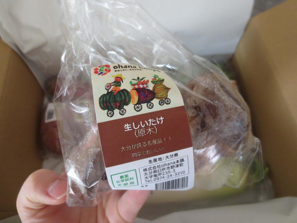 大分臼杵市の無農薬野菜ohana本舗の野菜セット9