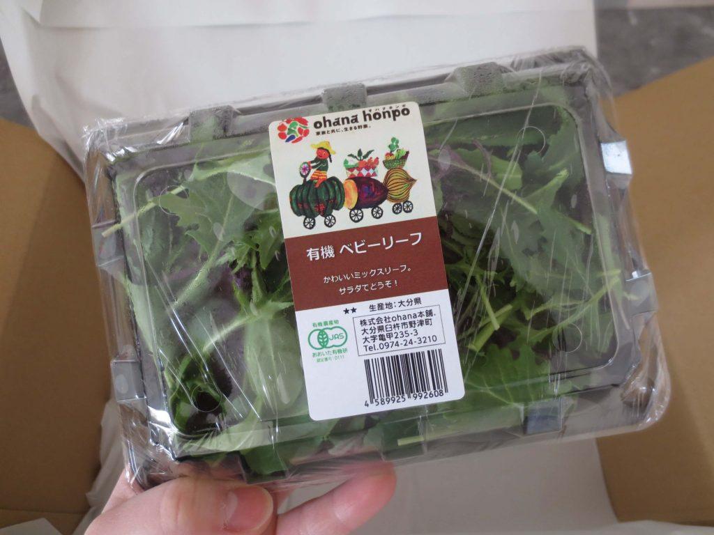 大分臼杵市の無農薬野菜ohana本舗の野菜セット13