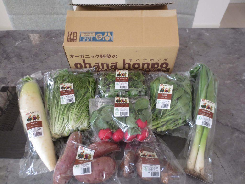 大分臼杵市の無農薬野菜ohana本舗の野菜セット23