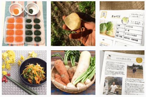 学習型無農薬野菜宅配manavegeマナベジの口コミと評判15