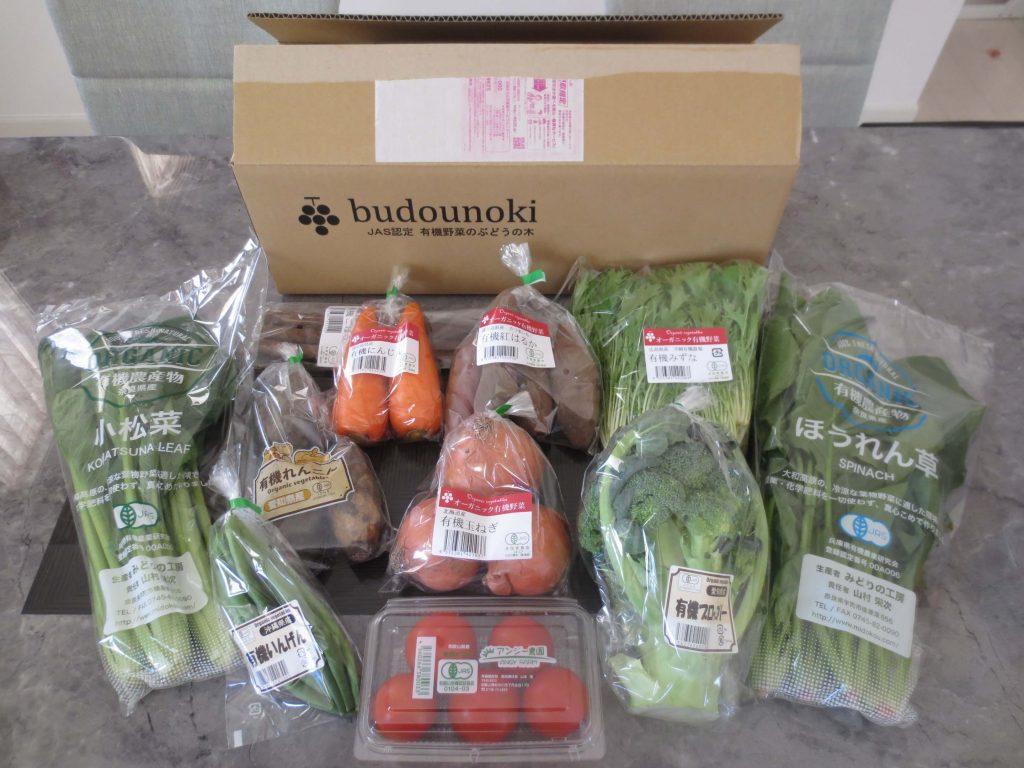 ぶどうの木の口コミ・評価、おすすめの有機野菜22