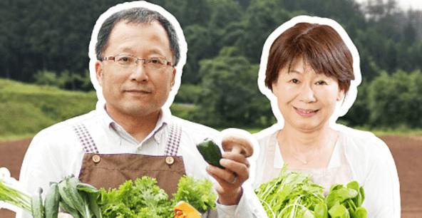 ぶどうの木の口コミ・評価、おすすめの有機野菜1