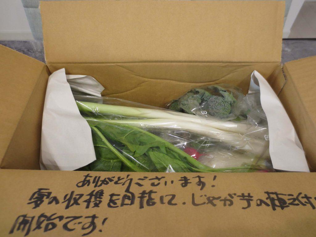 FAM FARM 埼玉入間市の無農薬野菜宅配の口コミと評判12