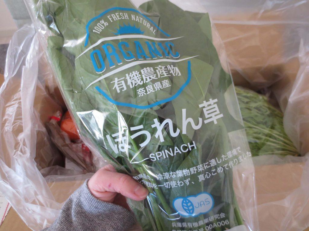 ぶどうの木の口コミ・評価、おすすめの有機野菜27