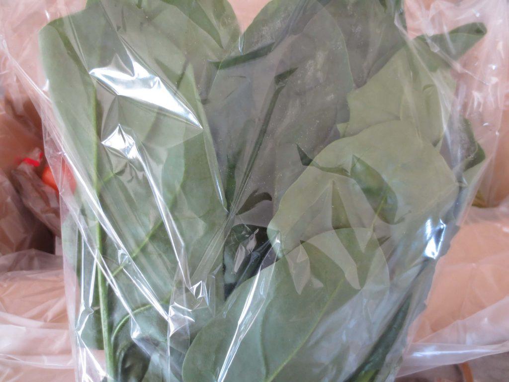 ぶどうの木の口コミ・評価、おすすめの有機野菜28