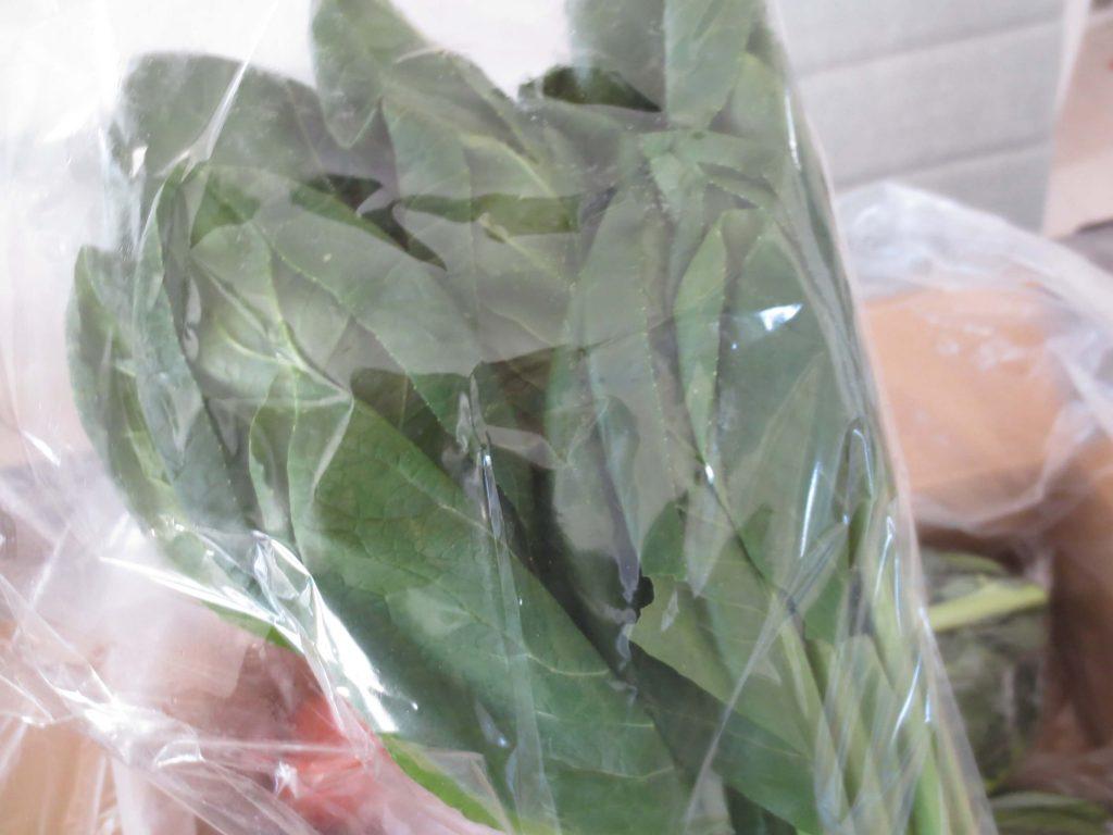 ぶどうの木の口コミ・評価、おすすめの有機野菜31