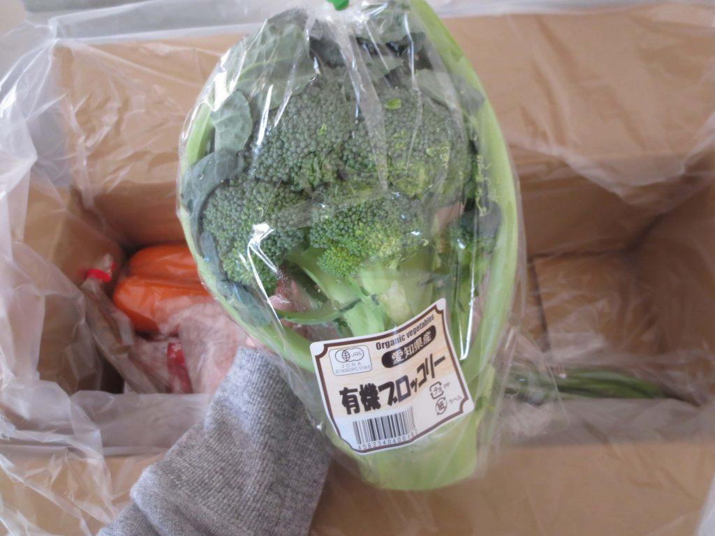 ぶどうの木の口コミ・評価、おすすめの有機野菜32