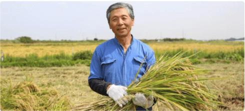 自然栽培野菜と米のナチュラルハーモニー定期宅配の感想・口コミ・評判4