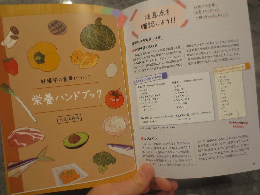 妊婦におすすめ:冷凍弁当宅配「ママの休食」の口コミ60