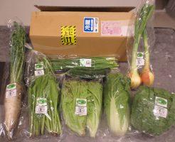 無農薬野菜と有機食材通販ふるさと21の評判と口コミ32