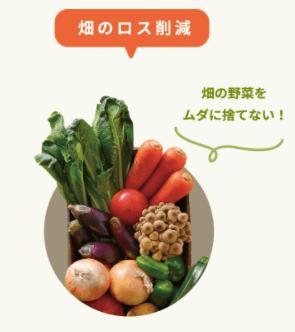 食品ロスを減らそう!オイシックスなどの野菜宅配がおすすめ7