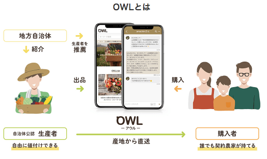 【評判と口コミ】野菜宅配・直送のOWL(アウル)6
