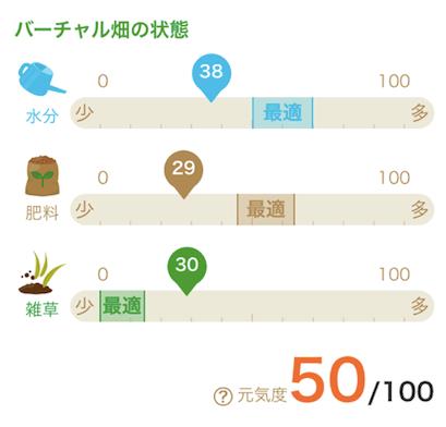 楽天ファームの有機野菜セットとサラダ定期便をお試し40
