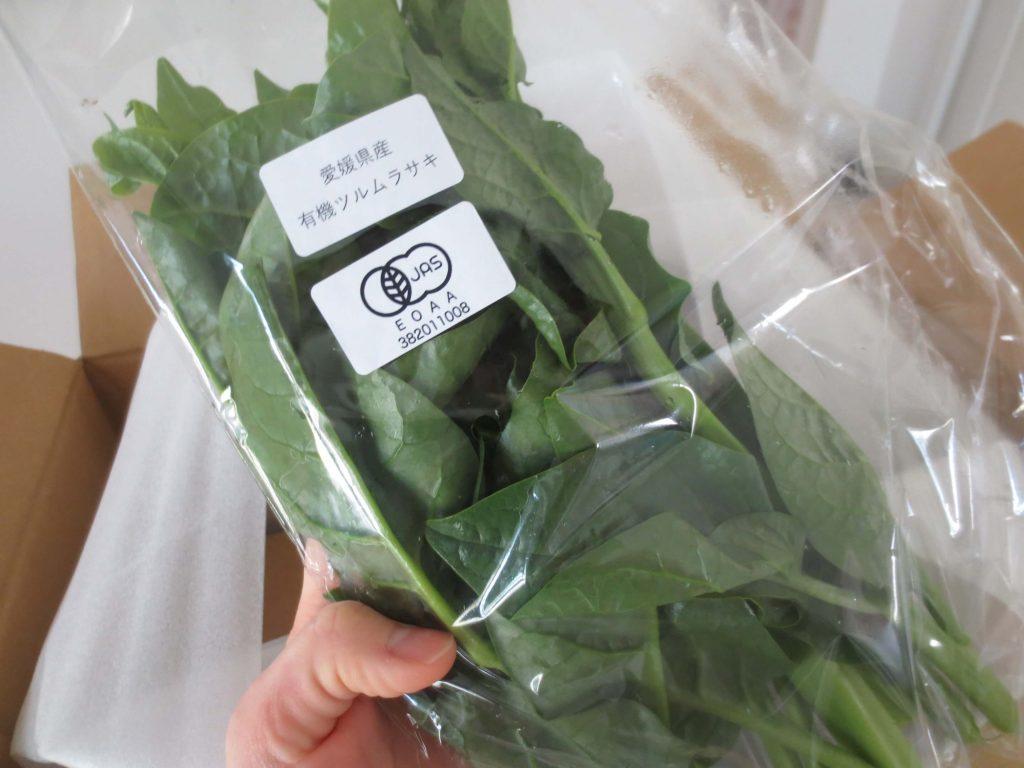 楽天ファームの有機野菜セットとサラダ定期便をお試し66