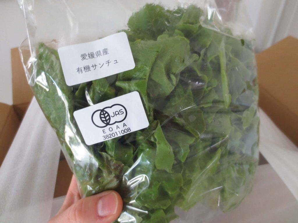 楽天ファームの有機野菜セットとサラダ定期便をお試し67