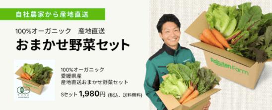 楽天ファームの有機野菜セットとサラダ定期便をお試し34