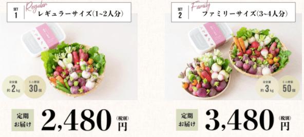 腸活ミニ野菜セットでぬか漬けライフ18