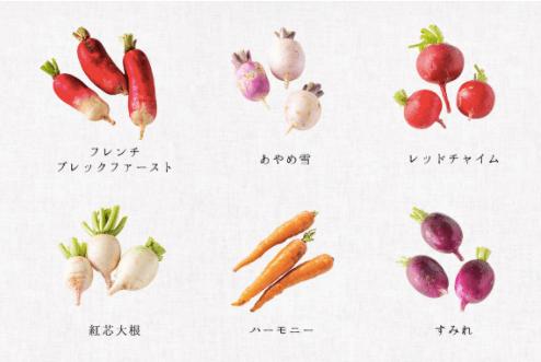 腸活ミニ野菜セットでぬか漬けライフ14