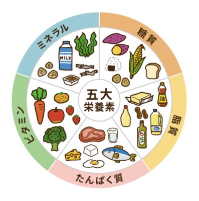 黄えんどう豆100%のZENB NOODLE(ゼンブヌードル)・小麦パスタとの比較3