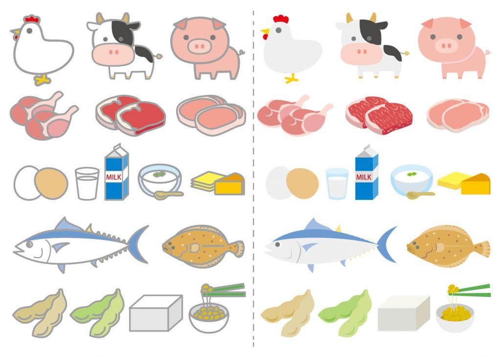 【食育実践アドバイザー監修】妊婦向け:たんぱく質のおすすめの摂取方法3