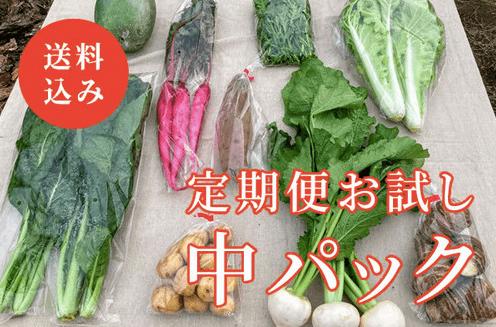 明石農園の「あかし野菜・埼玉県産/自然栽培野菜宅配・口コミ2