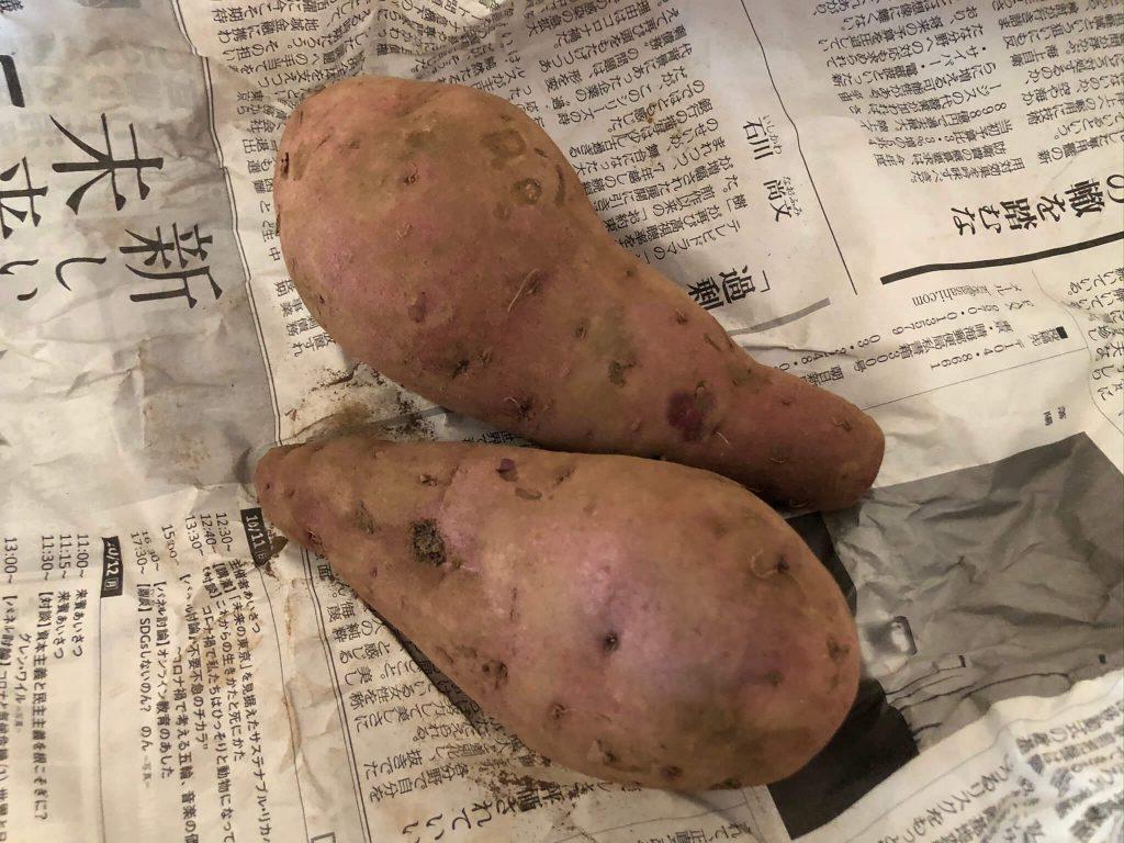 明石農園の「あかし野菜・埼玉県産/自然栽培野菜宅配・口コミ23