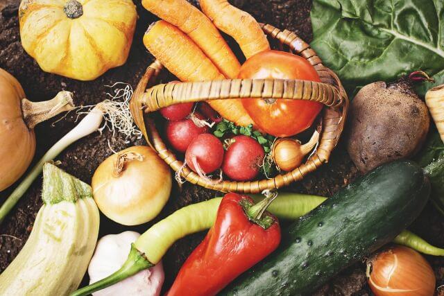野菜とタンパク質のパワーサラダで痩せる!おすすめレシピと宅配サービス23