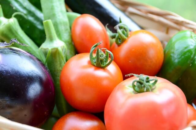 自然栽培野菜宅配・口コミが高い比較ランキング1