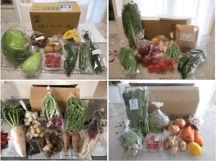 自然栽培野菜宅配・口コミが高い比較ランキング32