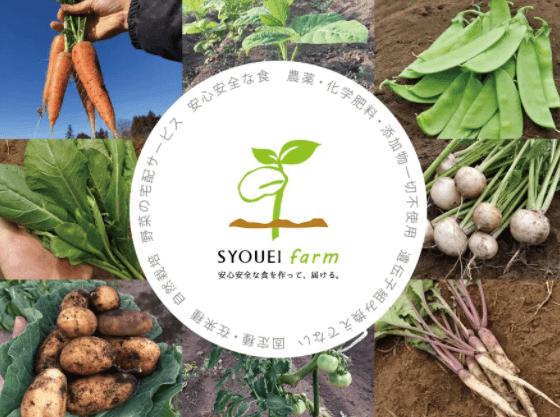翔栄ファーム(SYOUEI FARM)の無農薬・自然栽培野菜を大手宅配と比較!11
