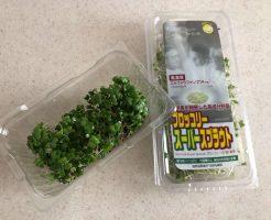 ブロッコリースプラウトの栄養価・効果・おすすめレシピ・自家栽培方法を野菜ソムリエが解説6