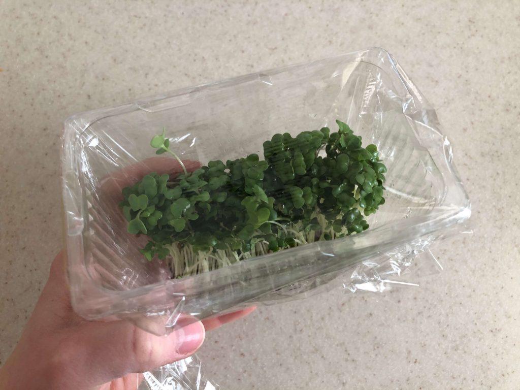 ブロッコリースプラウトの栄養価・効果・おすすめレシピ・自家栽培方法を野菜ソムリエが解説9