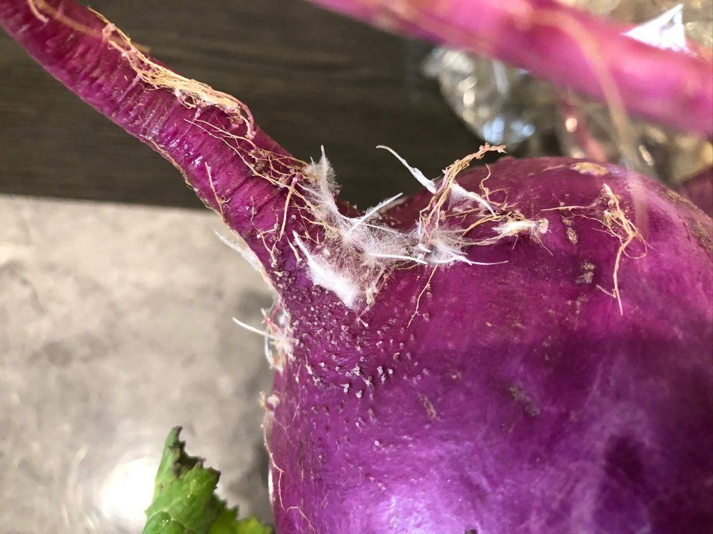 自然栽培野菜と食品のハミングバードショッピングの口コミ・感想34