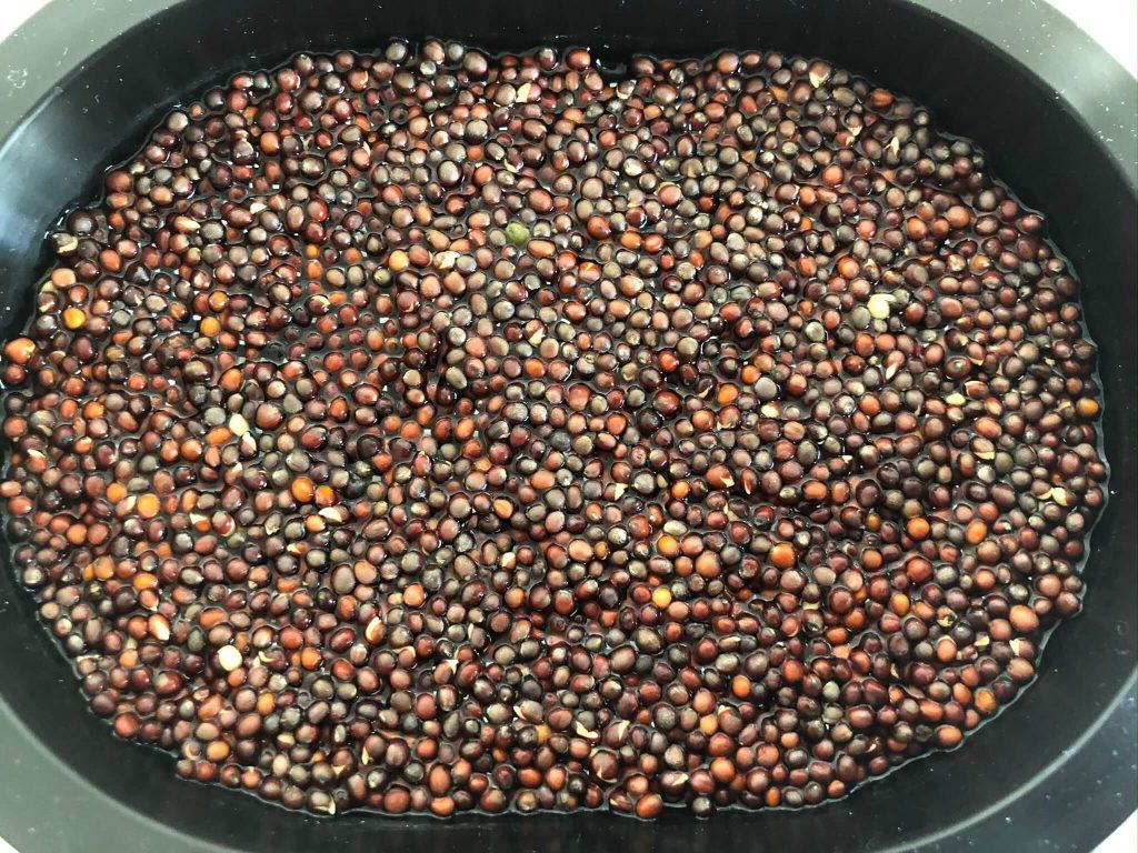 ブロッコリースプラウトの栄養価・効果・おすすめレシピ・自家栽培方法を野菜ソムリエが解説22