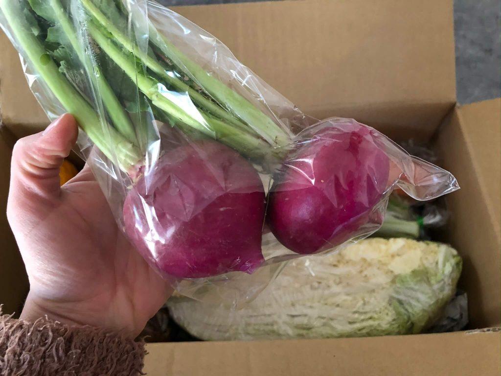 翔栄ファーム(SYOUEI FARM)の無農薬・自然栽培野菜を大手宅配と比較!20