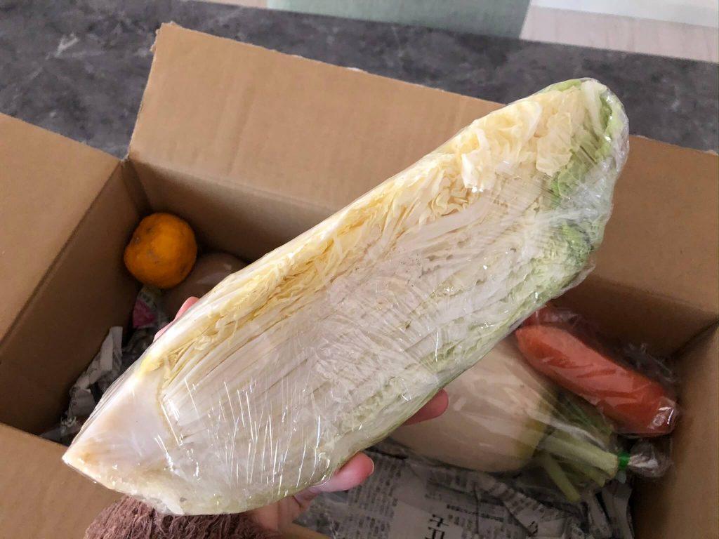 翔栄ファーム(SYOUEI FARM)の無農薬・自然栽培野菜を大手宅配と比較!22