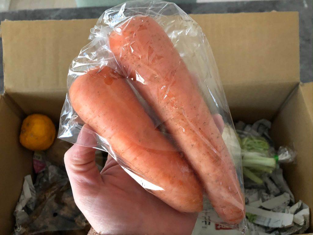 翔栄ファーム(SYOUEI FARM)の無農薬・自然栽培野菜を大手宅配と比較!23