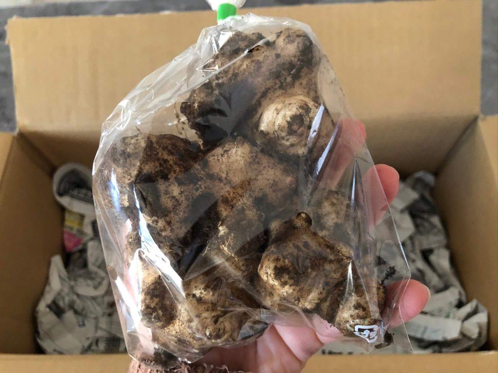 翔栄ファーム(SYOUEI FARM)の無農薬・自然栽培野菜を大手宅配と比較!27