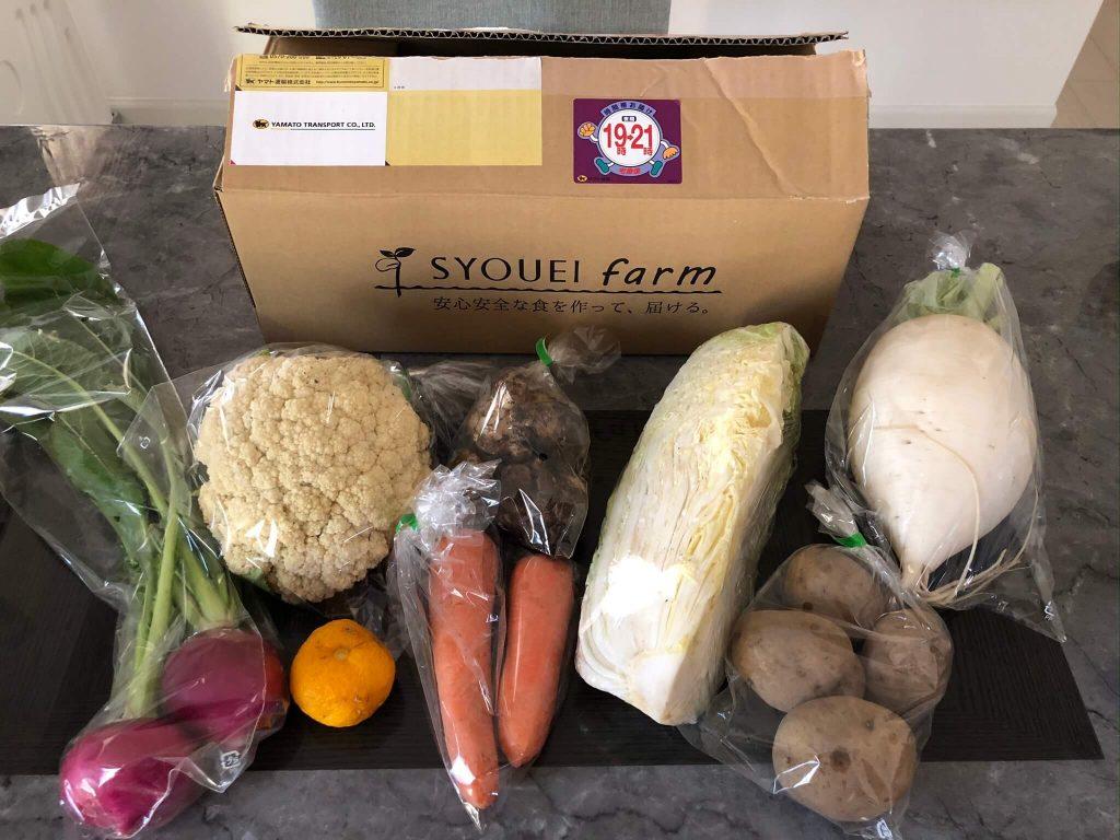 翔栄ファーム(SYOUEI FARM)の無農薬・自然栽培野菜を大手宅配と比較!40