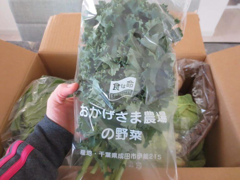 おすすめのスーパーフード(野菜・種・ナッツ)19