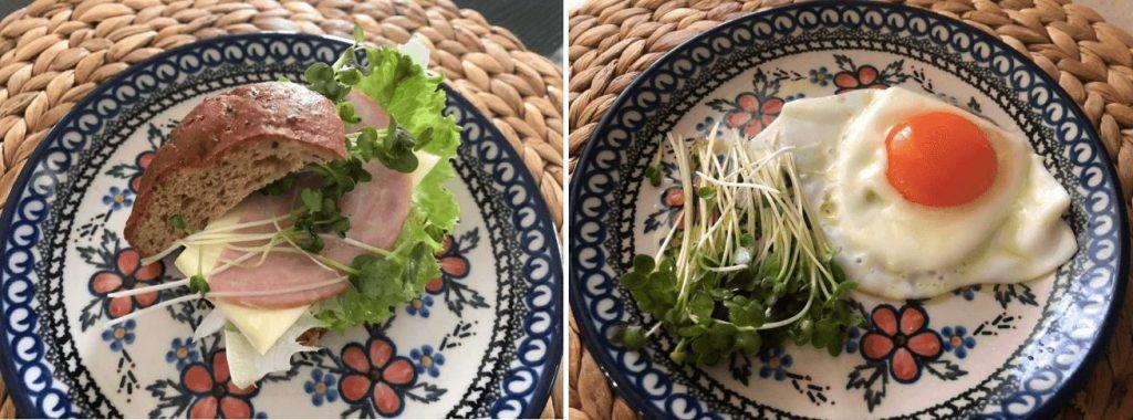 おすすめのスーパーフード(野菜・種・ナッツ)24