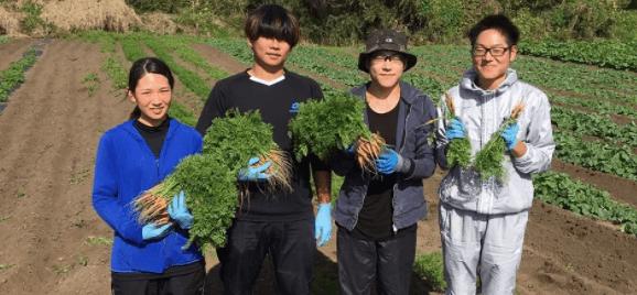 翔栄ファーム(SYOUEI FARM)の無農薬・自然栽培野菜を大手宅配と比較!5