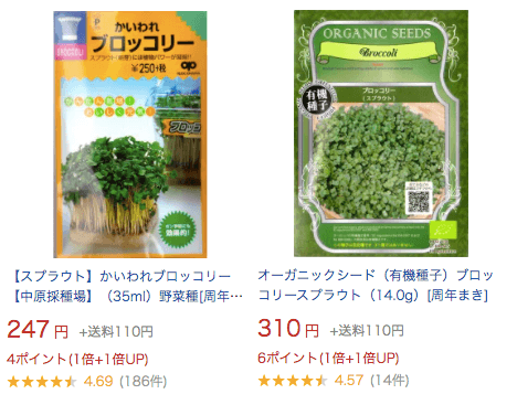 スーパー野菜「ブロッコリースプラウト」の栽培日記28