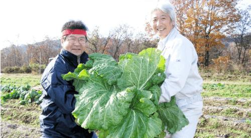東北・山形の有機野菜宅配「全国有機農法連絡会」の口コミ・感想11