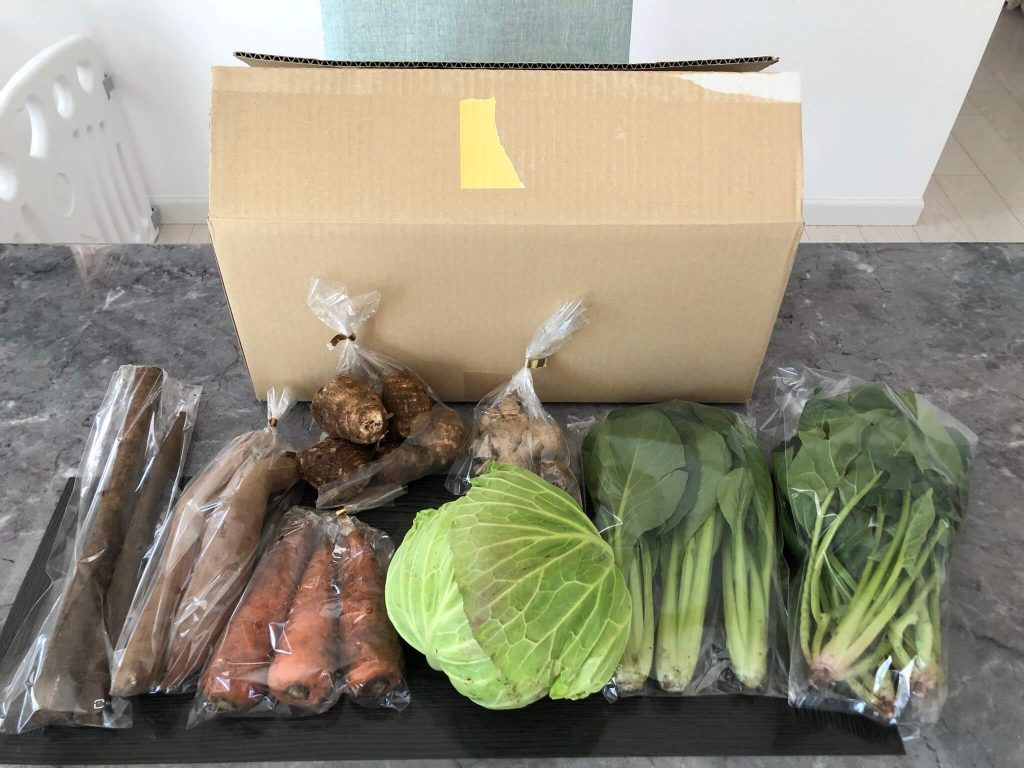 千葉県成田市の無農薬野菜宅配「あるまま農園」のお試しセットを取り寄せた39