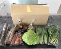 千葉県成田市の無農薬野菜宅配「あるまま農園」のお試しセットを取り寄せた30