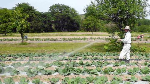 東北・山形の有機野菜宅配「全国有機農法連絡会」の口コミ・感想12