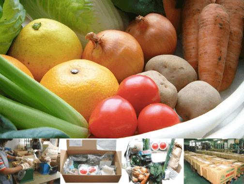 東北・山形の有機野菜宅配「全国有機農法連絡会」の口コミ・感想3