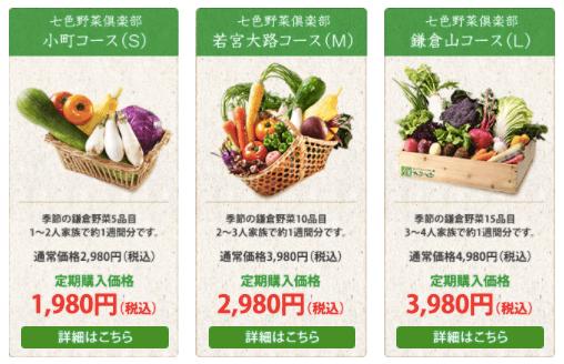 鎌倉直産野菜宅配「かまベジ」のお試しセットを注文3