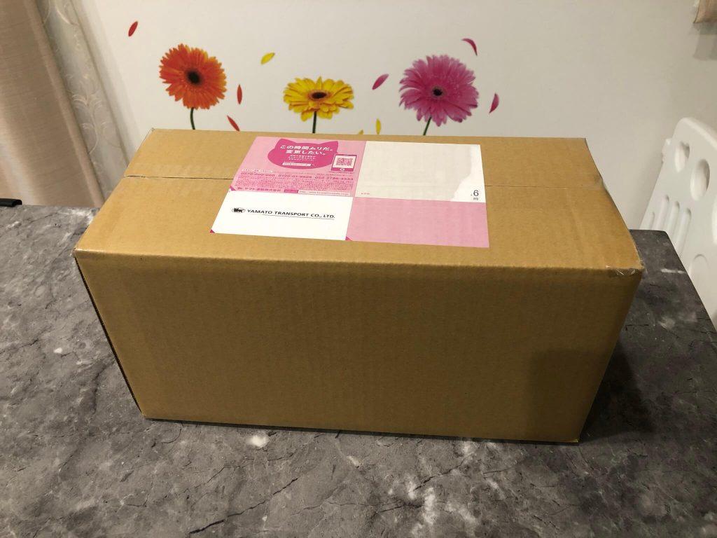 鎌倉直産野菜宅配「かまベジ」のお試しセットを注文13